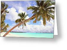 Whispering Palms. Maldives Greeting Card