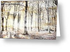 Whispering Woodland In Autumn Fall Greeting Card
