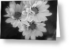 Whispers Of Beauty Greeting Card