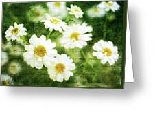 Whispers Of Spring Greeting Card