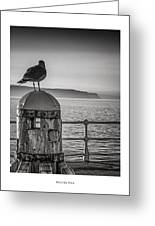 Whitby Pier Greeting Card