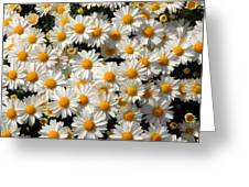 White An Yellow Greeting Card