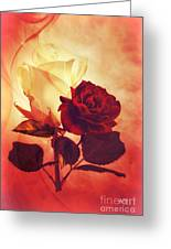 White And Red Roses Greeting Card