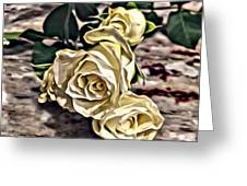White Baby Roses Greeting Card