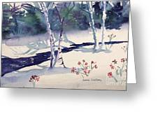 White Birches Greeting Card