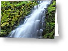 White Branch Falls Greeting Card