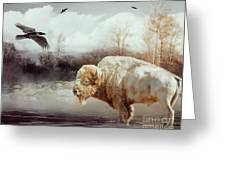White Buffalo And Raven Greeting Card