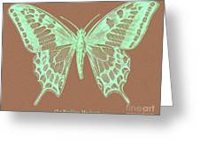 White Butterfly Swallow Tail Le Papillon Machaon Greeting Card