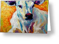 White Calf Greeting Card