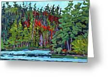 White Cedar Shore Greeting Card