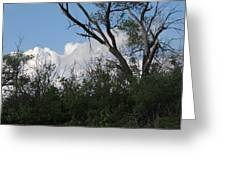 White Clouds With Trees Greeting Card