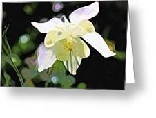 White Columbine 2 Greeting Card