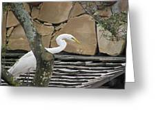 White Crane On Roof Greeting Card