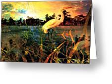 White Cranes Greeting Card
