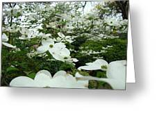 White Dogwood Flowers 6 Dogwood Tree Flowers Art Prints Baslee Troutman Greeting Card