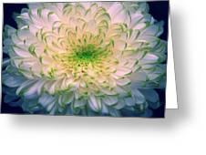 White Dream Greeting Card