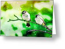 White-eared Bulbul - Watercolor Greeting Card