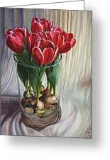 White-edged Red Tulips Greeting Card
