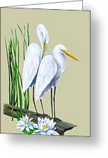 White Egrets And White Lillies Greeting Card