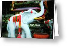 White Elephant. Meaning A Big Expensive Greeting Card