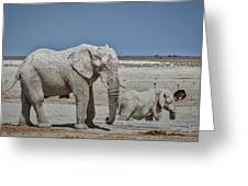 White Elephants Greeting Card