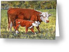 White Face Cow And Calf Greeting Card