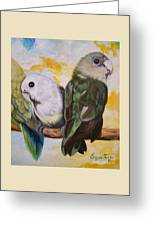 Chloe The    Flying Lamb Productions           White Faced Lovebirds Greeting Card