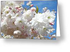 White Floral Tree Flower Blossoms Art Baslee Troutman Greeting Card
