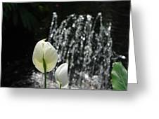 White Flower At Fountain Greeting Card