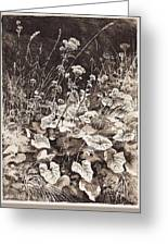 White Flowers 1877 12 3h9 Ivan Ivanovich Shishkin Greeting Card