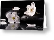 White Flowers Black Stones Greeting Card