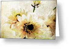 White Flowers Greeting Card by Linda Woods