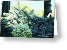 White Flowers W15 Greeting Card