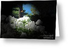 White Flowers With Monarch Butterfly Greeting Card
