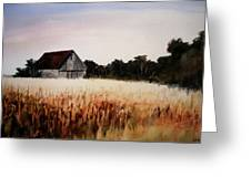 White For Harvest Greeting Card