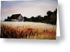 White For Harvest Greeting Card