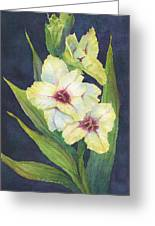 White Glads Greeting Card
