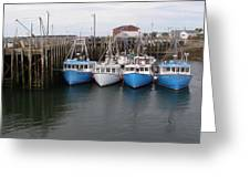 White Head Flotilla Greeting Card