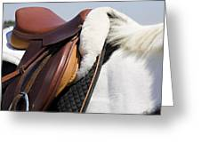 White Horse And Saddle Greeting Card