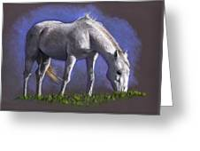 White Horse Grazing Greeting Card