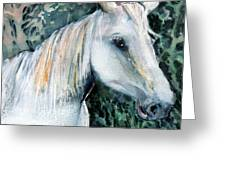 White Horse Greeting Card by Mindy Newman