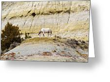 White Horse On A Mound Greeting Card