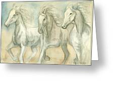 White Horses Greeting Card by Delores Swanson