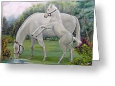 White Horses Greeting Card