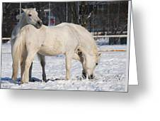 White Horses In The Snow  Greeting Card