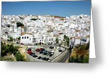 White Houses Greeting Card
