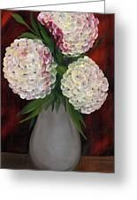 White Hydrangeas Greeting Card