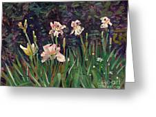 White Irises Greeting Card