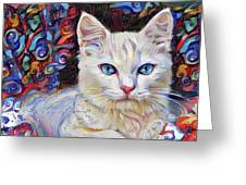 White Kitten With Blue Eyes Greeting Card