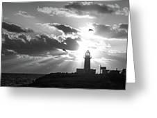 White Light Greeting Card